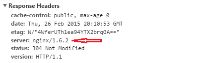 NginX Server Header
